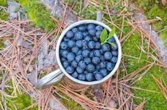在金属杯子的蓝莓 库存图片