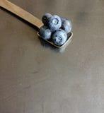 在金属正方形匙子的蓝莓 库存图片