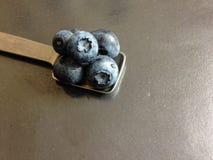 在金属正方形匙子的蓝莓 免版税库存照片