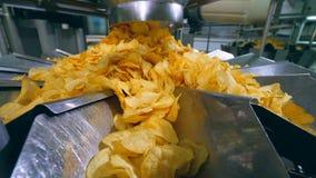 在金属片排序的黄色油炸马铃薯片在食用植物 影视素材