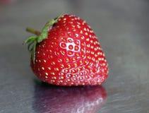 在金属片的草莓 库存图片