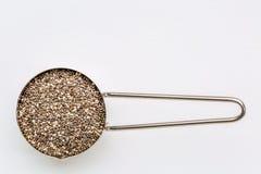 在金属瓢的Chia种子 库存图片
