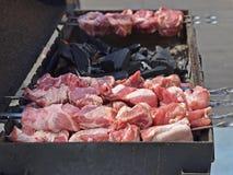 在金属的开胃烤肉串串起室外野餐 免版税库存照片