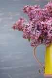 在金属的新鲜的淡紫色花染黄投手反对蓝色背景 免版税库存图片