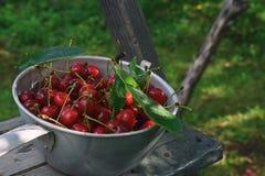 在金属的甜樱桃在一个木楼梯滚保龄球在庭院里 免版税库存照片