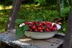 在金属的甜樱桃在一个木楼梯滚保龄球在庭院里 库存图片