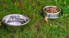 在金属碗的狗食在草 免版税库存图片