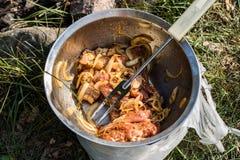 在金属碗的用卤汁泡的猪肉 为烤准备的纤巧 免版税库存照片