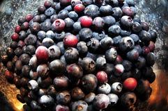 在金属碗的蓝莓 库存照片