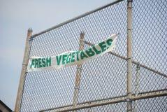 在金属篱芭的新鲜蔬菜标志 免版税库存照片