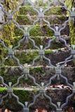 在金属门后的青苔台阶 库存图片