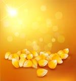 在金背景的传染媒介玉米 图库摄影