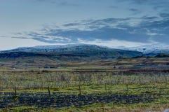 在金黄小时,在冰岛风景的日落与绿色青苔 库存图片
