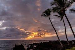 在金黄小时,棕榈树剪影在海滩的大岛 库存图片