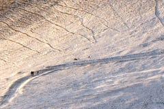 在金黄小时,走在道路的三个人和两条狗盖由在Monte Cucco翁布里亚,意大利的雪 库存图片