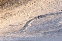 在金黄小时,走在道路的三个人和两条狗盖由在Monte Cucco翁布里亚,意大利的雪 免版税图库摄影