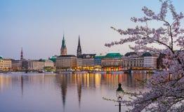 在金黄小时,阿尔斯坦河和汉堡城镇厅- Rathaus美好的全景春天收入晚上 图库摄影