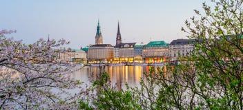 在金黄小时,阿尔斯坦河和汉堡城镇厅- Rathaus美好的全景春天收入晚上 库存照片