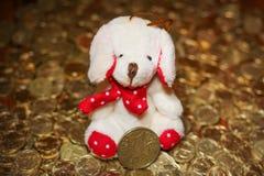 在金黄废弃物的逗人喜爱的小犬座 库存图片