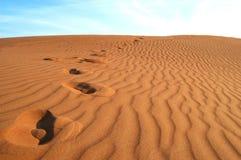 在金黄沙子的脚印 库存图片
