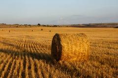 在金黄草甸和蓝色清楚的天空的秸杆大包在日落 库存图片