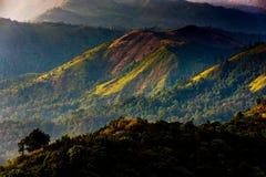 在金黄阳光期间的高山 库存照片