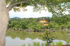 在金黄亭子的京都视图 库存图片