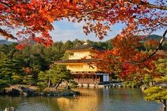 在金黄亭子, Kinkaku籍寺庙,京都,日本的仔细的审视 库存照片