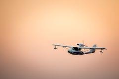 在金黄天空的飞机飞行 免版税库存图片