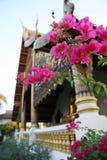 在金黄寺庙下的花 免版税库存照片