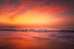 在金黄日落的海滩 免版税库存照片