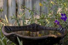 在金黄早晨光的反射性庭院戏水盆 库存照片