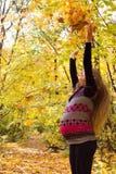 在金黄秋天森林妊妇的步行 库存照片