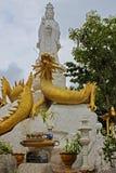 在金黄龙的白色观世音菩萨 图库摄影