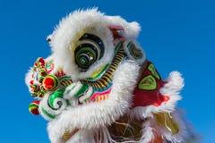 在金黄龙Parede期间的中国狮子。 免版税库存照片