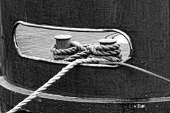 在钉子栓的绳索 库存照片