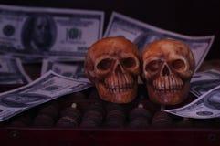 在钞票和硬币,金钱的头骨 免版税库存照片
