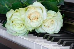 在钢琴钥匙的三朵轻轻地白绿的玫瑰 库存图片
