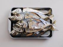 在钢盘子的油煎的鲭鱼 免版税库存照片