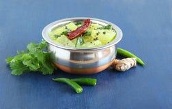 在钢碗的南瓜水鹿南印地安素食食物 免版税库存图片