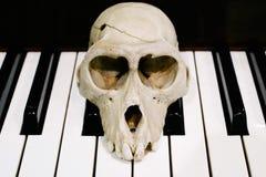 在钢琴的猴子头骨 库存照片
