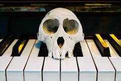在钢琴的猴子头骨 免版税库存图片