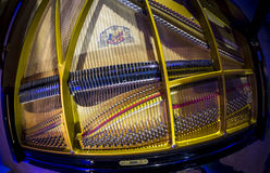 在钢琴里面的串 库存图片