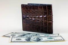 在钱包之外的金钱 库存图片