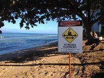 在钾ANALPALI海滩的生活 免版税库存图片