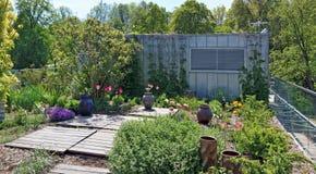 在铁棚子附近的农村围场用blossomin装饰 免版税图库摄影