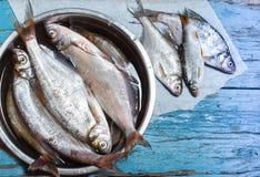 在铁的鲜鱼在木背景滚保龄球 图库摄影
