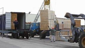 在铁货车的装载的木材 影视素材
