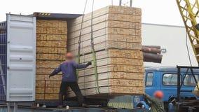 在铁货车的装载的木材 股票视频