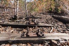 在铁路、铁路,铁路轨道,被放弃的,被毁坏的和长满的木头的树 免版税库存照片